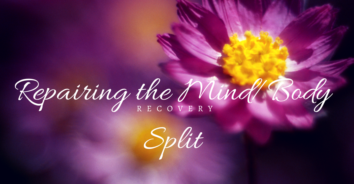 Repairing the Mind-Body Split