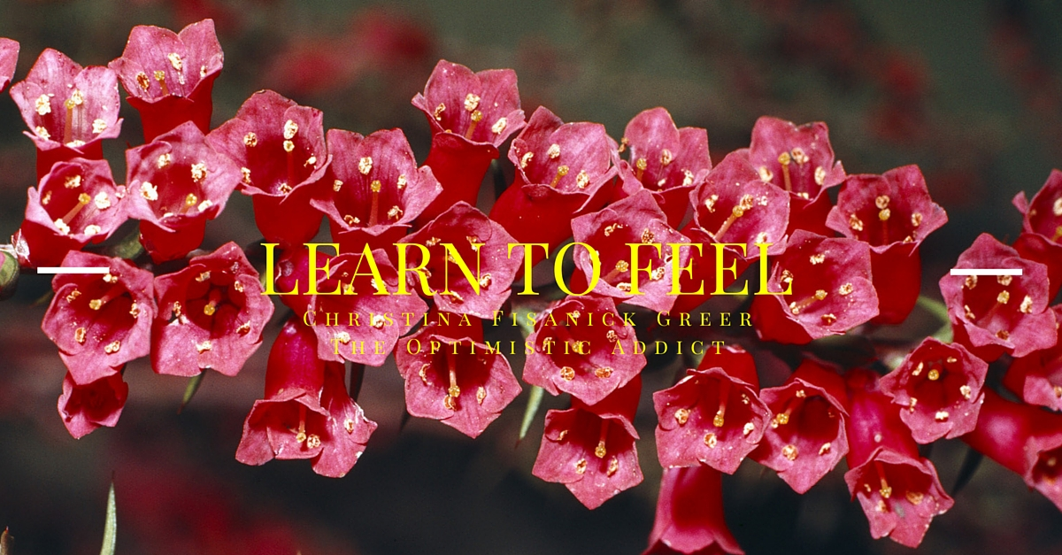 Learn to Feel